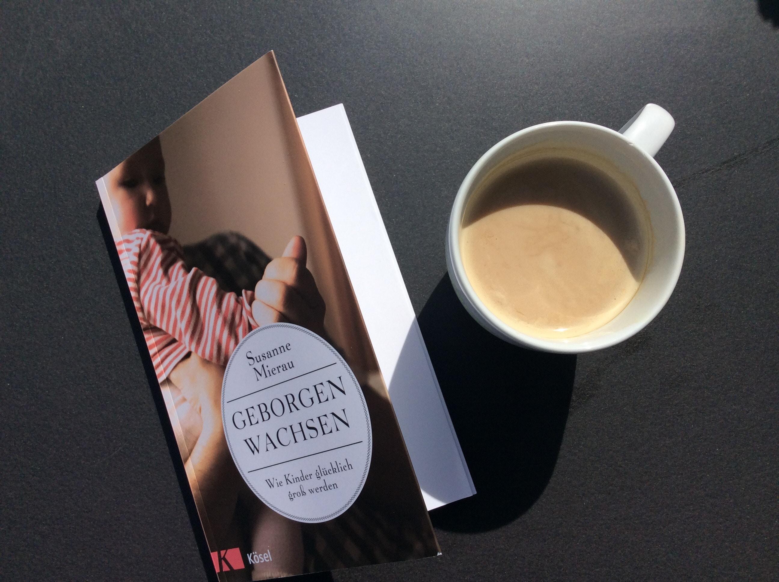 """Rezension """"Geborgen wachsen"""" von Susanne Mierau"""
