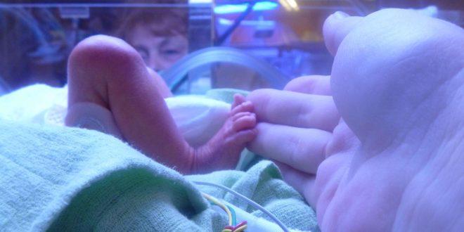 In welcher ssw werden die meisten babys geboren