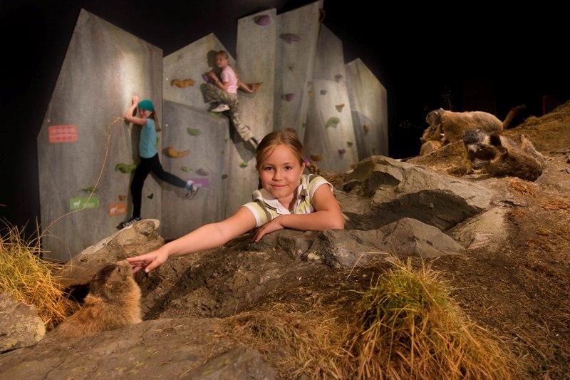Die Top 11 Ausflugsziele in Zell am See/Kaprun mit Kindern: Nationalpark Hohe Tauern