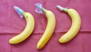 Bananen-richtig-lagern