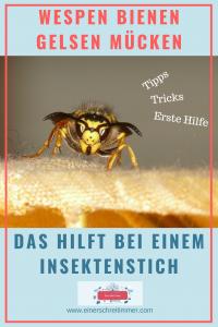 Wespenstiche, Bienenstiche, Gelsen, Mücken und Co: Das hilft wirklich. So vermeidet ihr Insektenstiche. Das ist zu tun wenn man von einer Wespe, Biene gestochen wird. #tipps #tricks #hausmittelchen